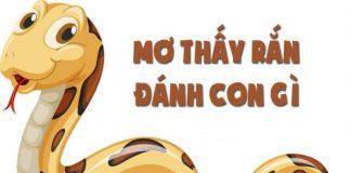 Nam-Mo-Thay-Ran-Danh-Con-Gi